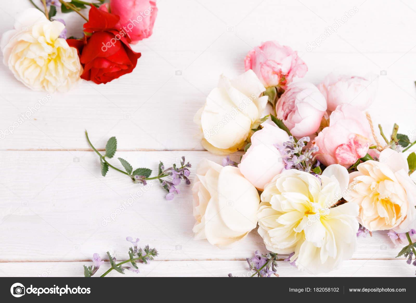 Festif Fleur Anglais Rose Composition Sur Fond Blanc Vue