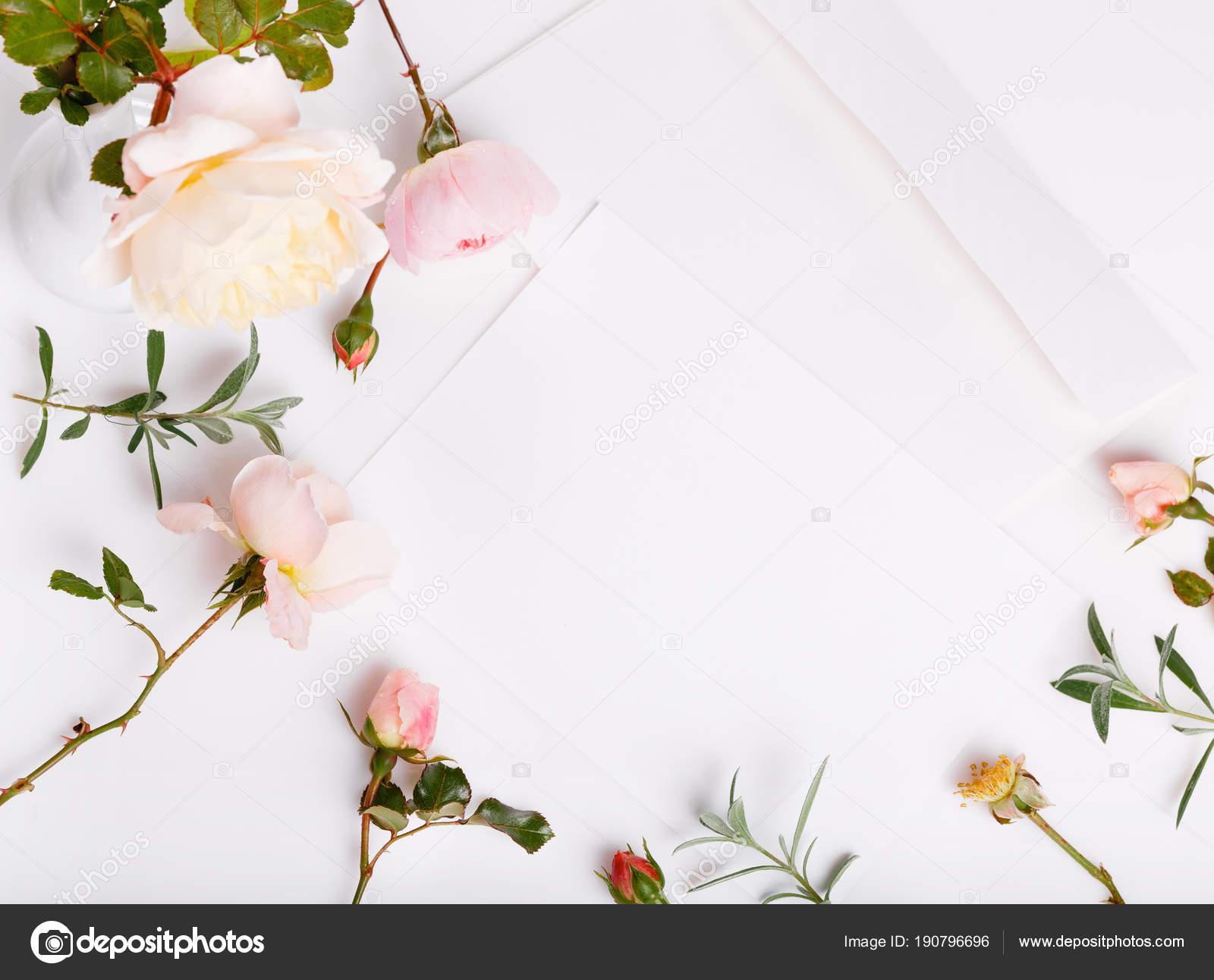 List Pióra I Białe Koperty Na Białym Tle Z Różowych Róż Angielski
