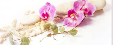 Spa background with stones and purple orchid isolated on white