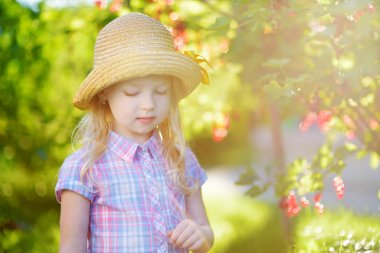 Cute little girl picking red currants