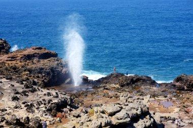 Nakalele blowhole on Maui coastline