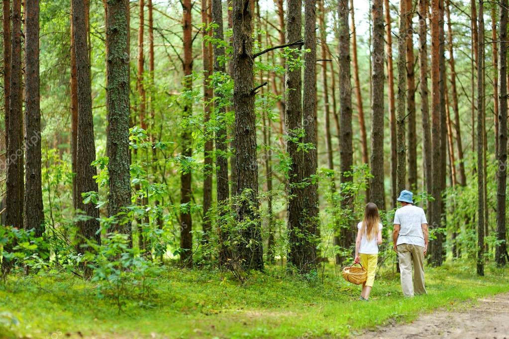 Cute little girl hiking in a forest with her grandmother on beautiful summer day