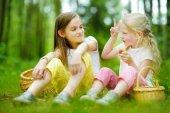 Fotografie Dvě roztomilé sestřičky baví po lese na výlet na krásný letní den. Aktivní rodinnou dovolenou s dětmi. Rodinná zábava