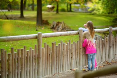 Two cute little sisters watching animals in the zoo on warm and sunny summer day. Children watching zoo animals standing by the fence. Active family leisure.