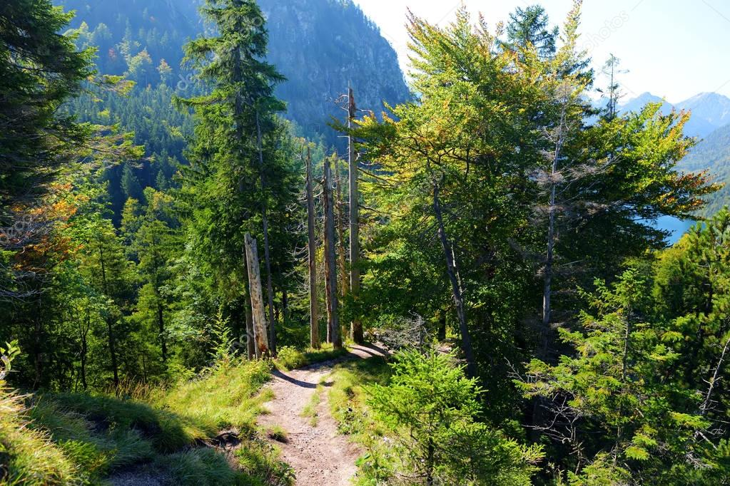 Hiking trail around famous Neuschwanstein Castle on a rugged hill above the village of Hohenschwangau near Fussen in southwest Bavaria, Germany