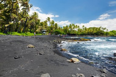 Hawaiian green turtles relaxing at Punaluu Black Sand Beach on Big Island of Hawaii, USA