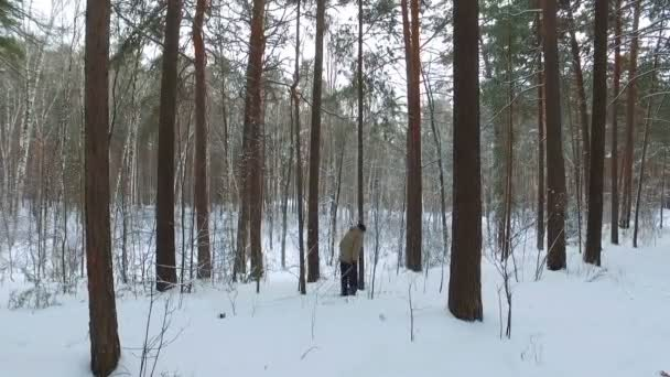 Skier running down the Siberian snow-covered forest