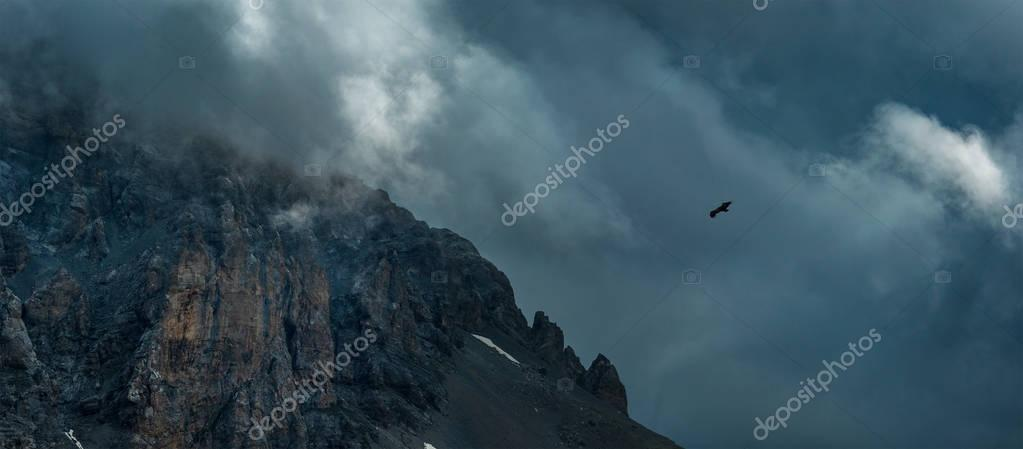 Eagle soaring near rock Zagedan. Caucasus Mountains.