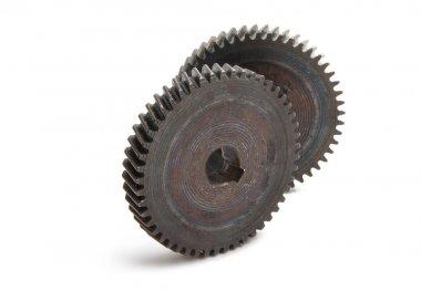 iron gear isolated
