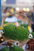 Fotografie Easter baskets with grass