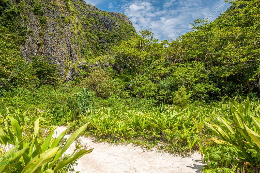 Phi Phi Ley island