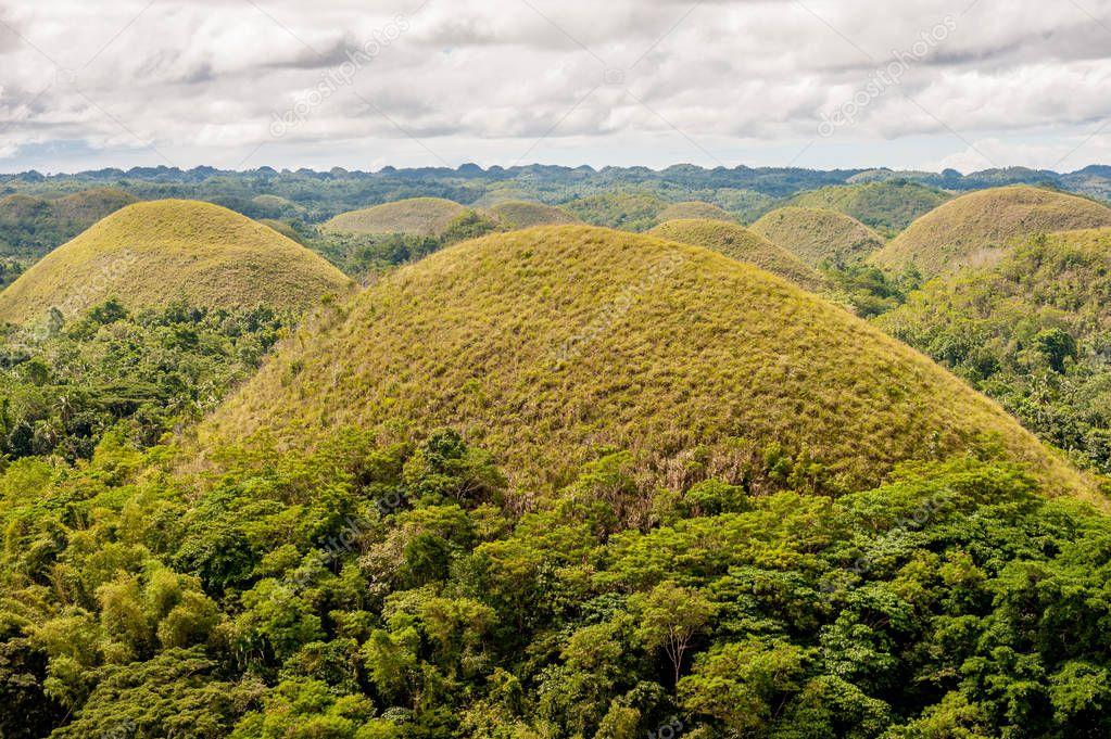 Chocolate hills landscape