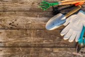 Photo Gardening tools on wooden background