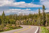 Strada principale nel Parco nazionale di Yellowstone, Wyoming, Stati Uniti