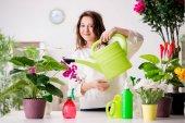 Mladá žena hledá po rostliny doma