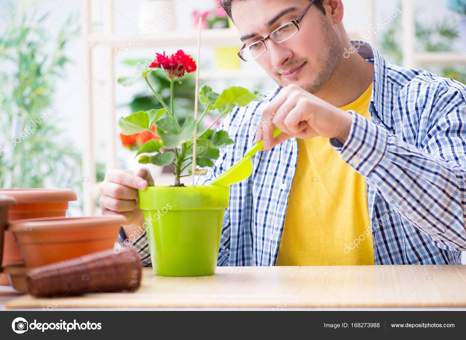 Fleuriste jardinier travaillant dans un magasin de fleurs for Magasin de plantes