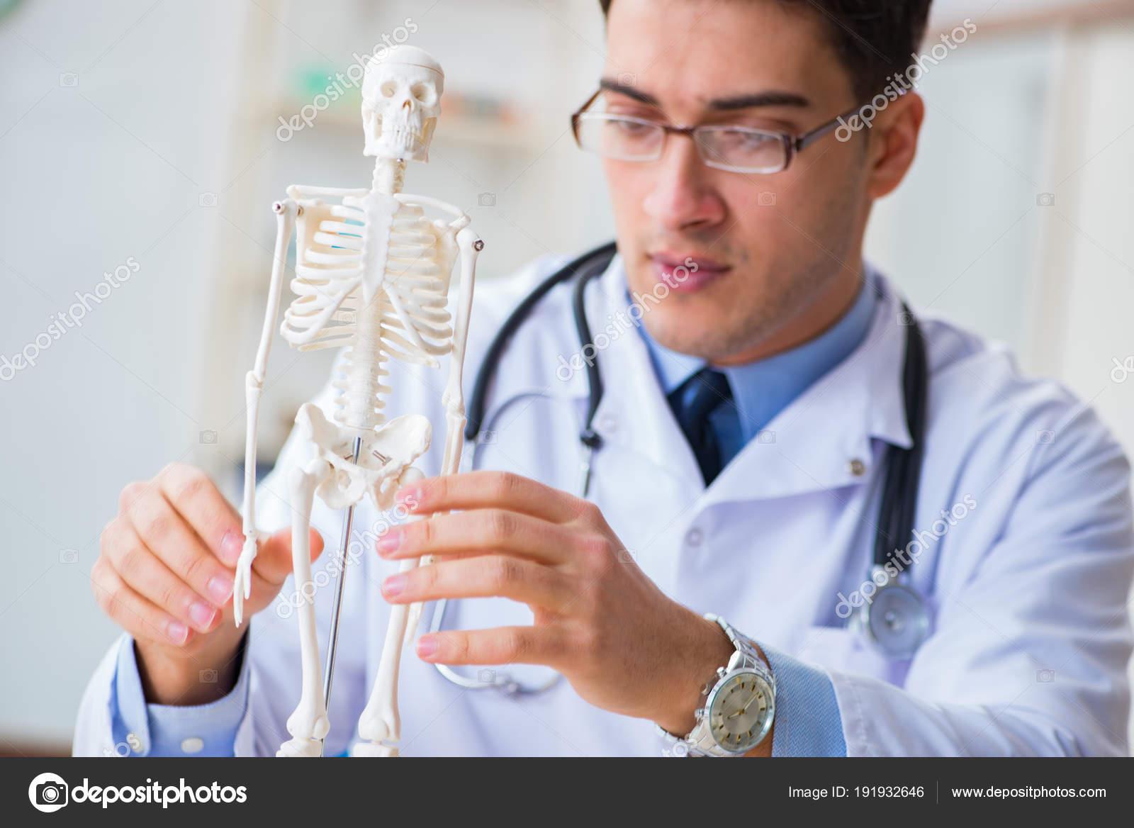 Gyakornok orvosi hallgató