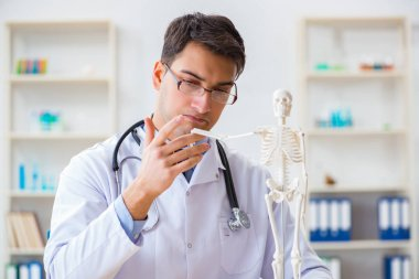 Doctor student studying the bones of skeleton stock vector