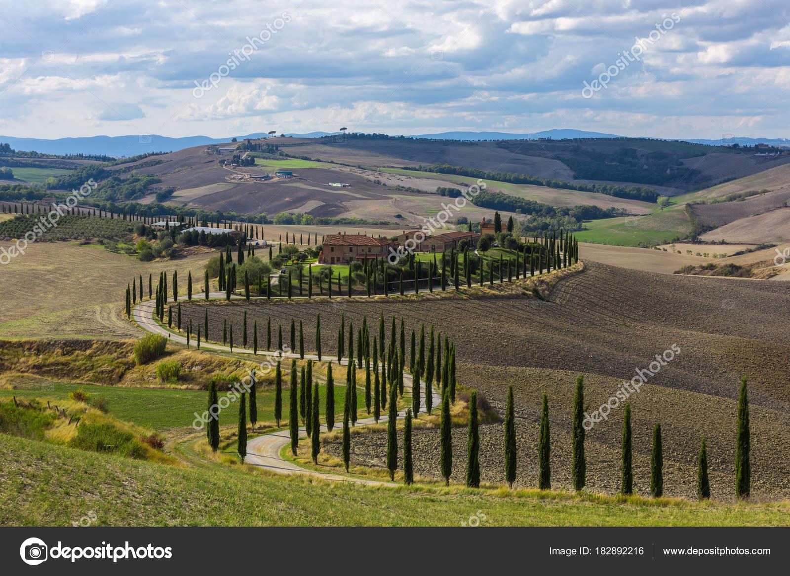 Case Rurali Toscane : Italia tuscana ottobre 2017 paesaggio colline strada campagna alberi