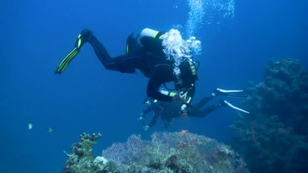 Diver with aqualung and camera swimming underwater near the coral reef. 4K