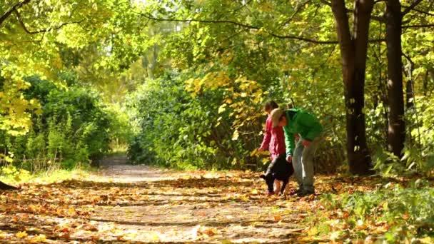 děti si hrát se psem na podzim park