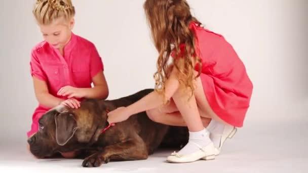 Видео красивые девушки ласкают показывают между ног