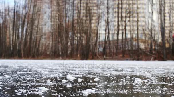 bruslaři na zamrzlém rybníku mezi stromy