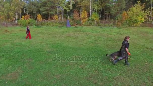 Žena a ovčácký pes, aby cvičení
