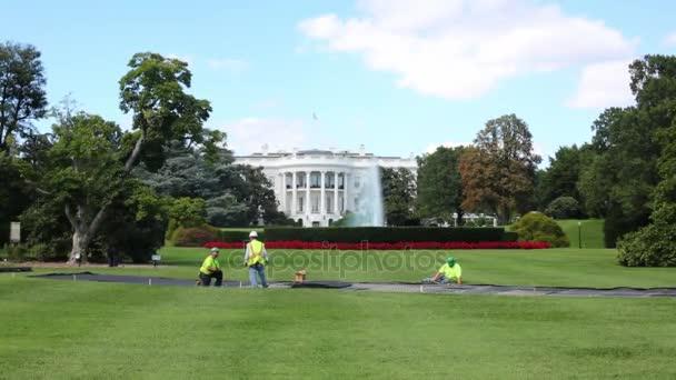 Dělníci na louce nedaleko Bílého domu