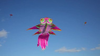 Flying kite pink owl on wind in blue sky with clouds