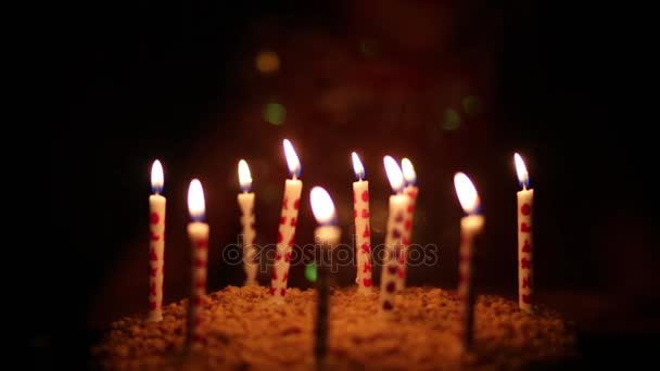 Lighting Candles Cake Girl Out Focus Darkness Birthday Stock Video