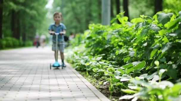 Malý hezký boy jezdí na skútru v létě zelený park