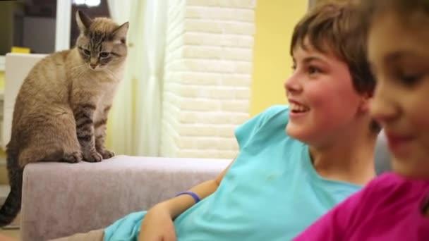 die Katze sitzt mit Jungen und Mädchen auf der Armlehne des Sofas