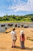 Fotografie Kinder beobachten Elefanten