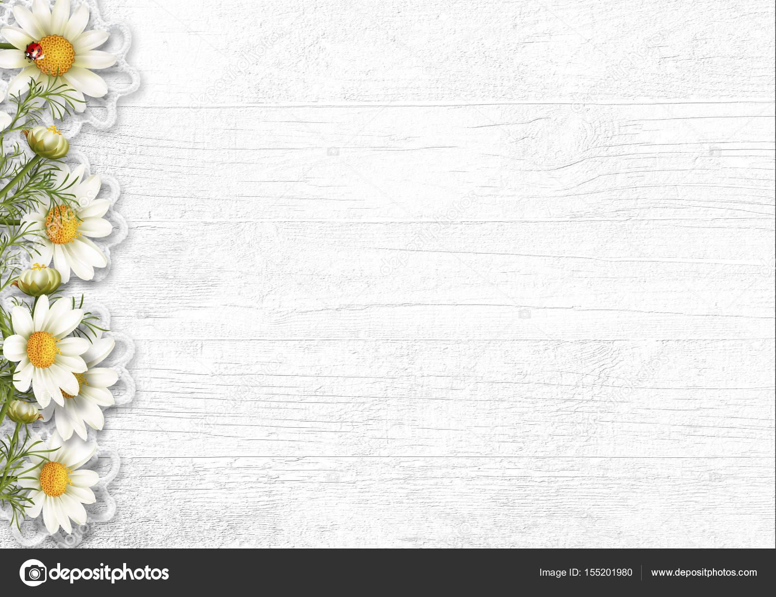 Дейзі квіток ромашки на дерев яними тлі. Переглянути копію spa — стокове  фото 25a96a2064b18