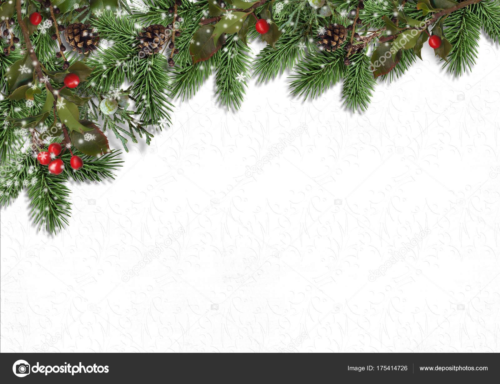Hintergrund Weihnachten.Weihnachten Hintergrund Mit Firtree Und Holly Auf Weiss