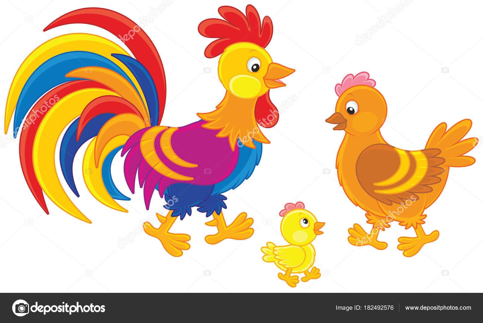 Gallos Coloridos Dibujos Animados: Familia Divertido Gallo Color Brillantes Una Linda Gallina
