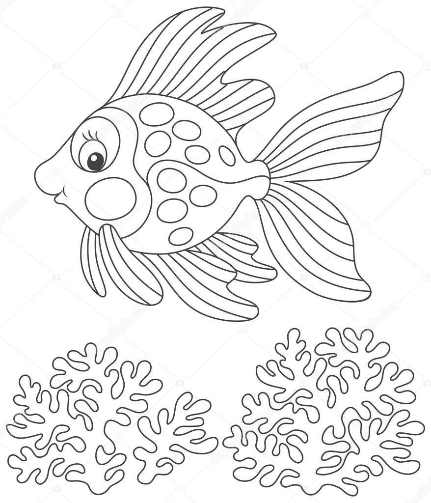 Großzügig Korallen Malvorlage Ideen - Malvorlagen Von Tieren - ngadi ...