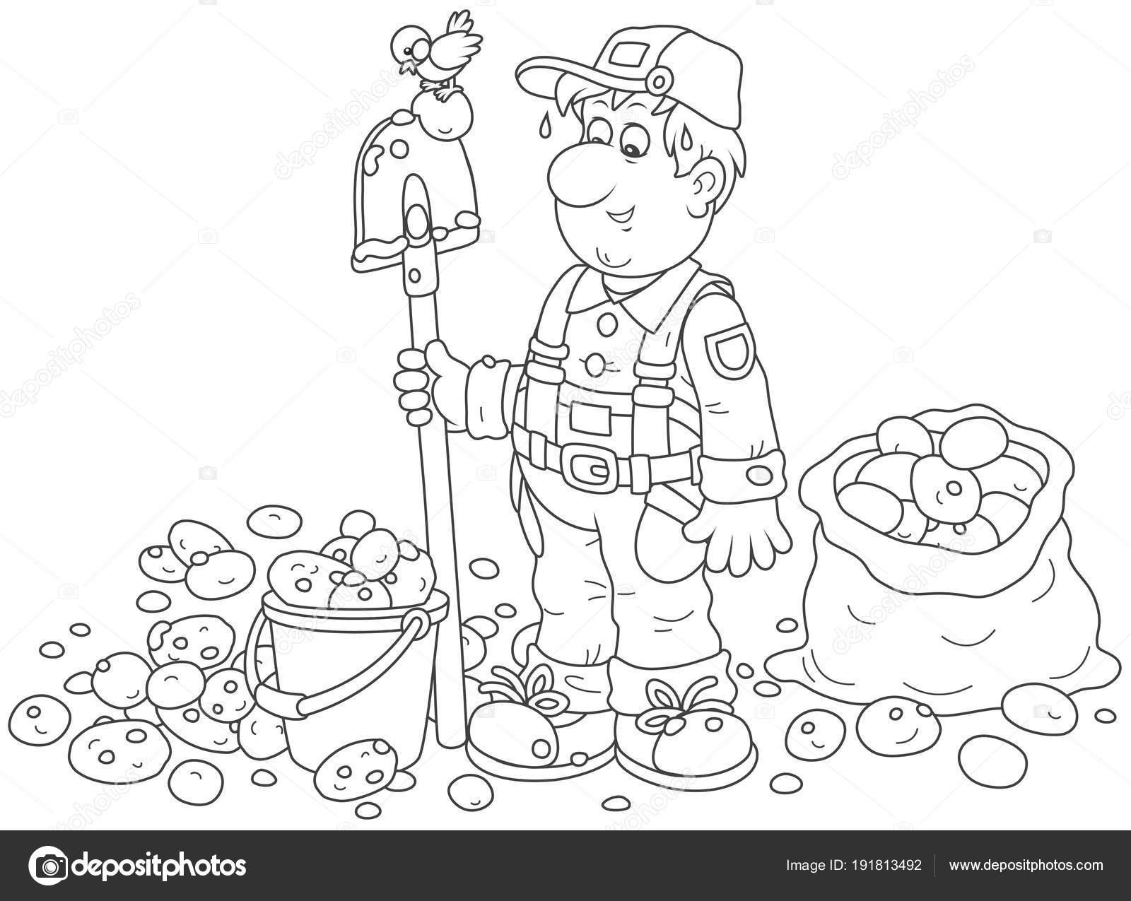 Cultivo Papa Rico Sonriendo Granjero Con Una Pala Cubo Saco — Vector ...
