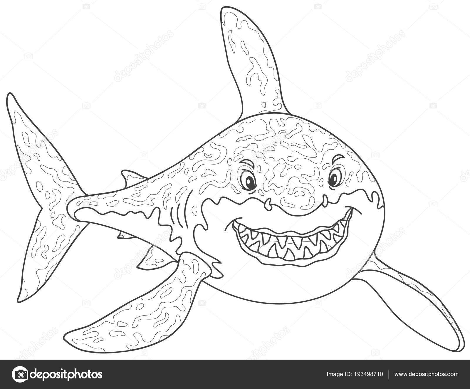 Freundlich Lächelnd Weiße Hai Angreifen Schwarz Weiß Vektor ...