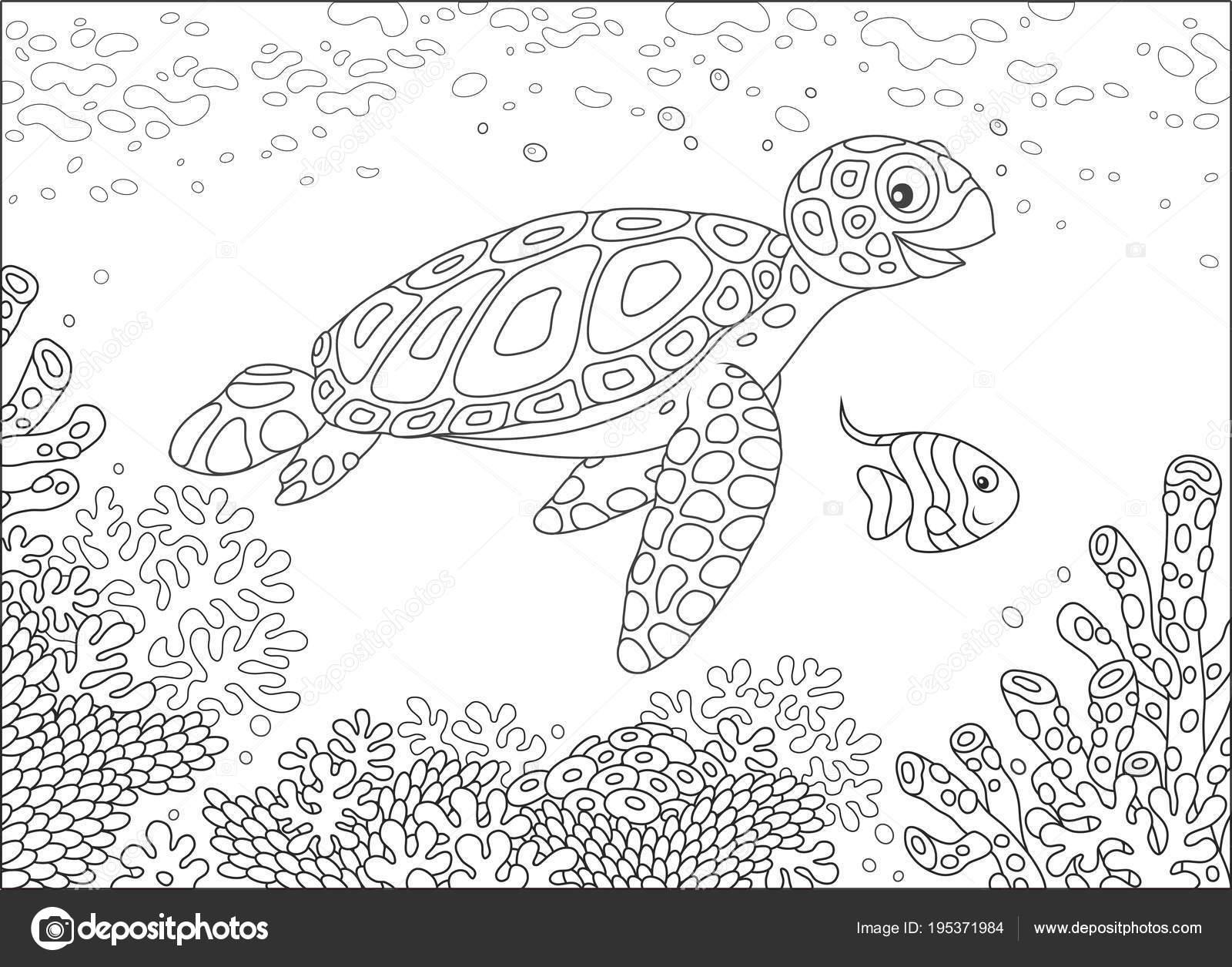 Illustrazione Di Tartaruga Marina Da Colorare Illustrazione Stile