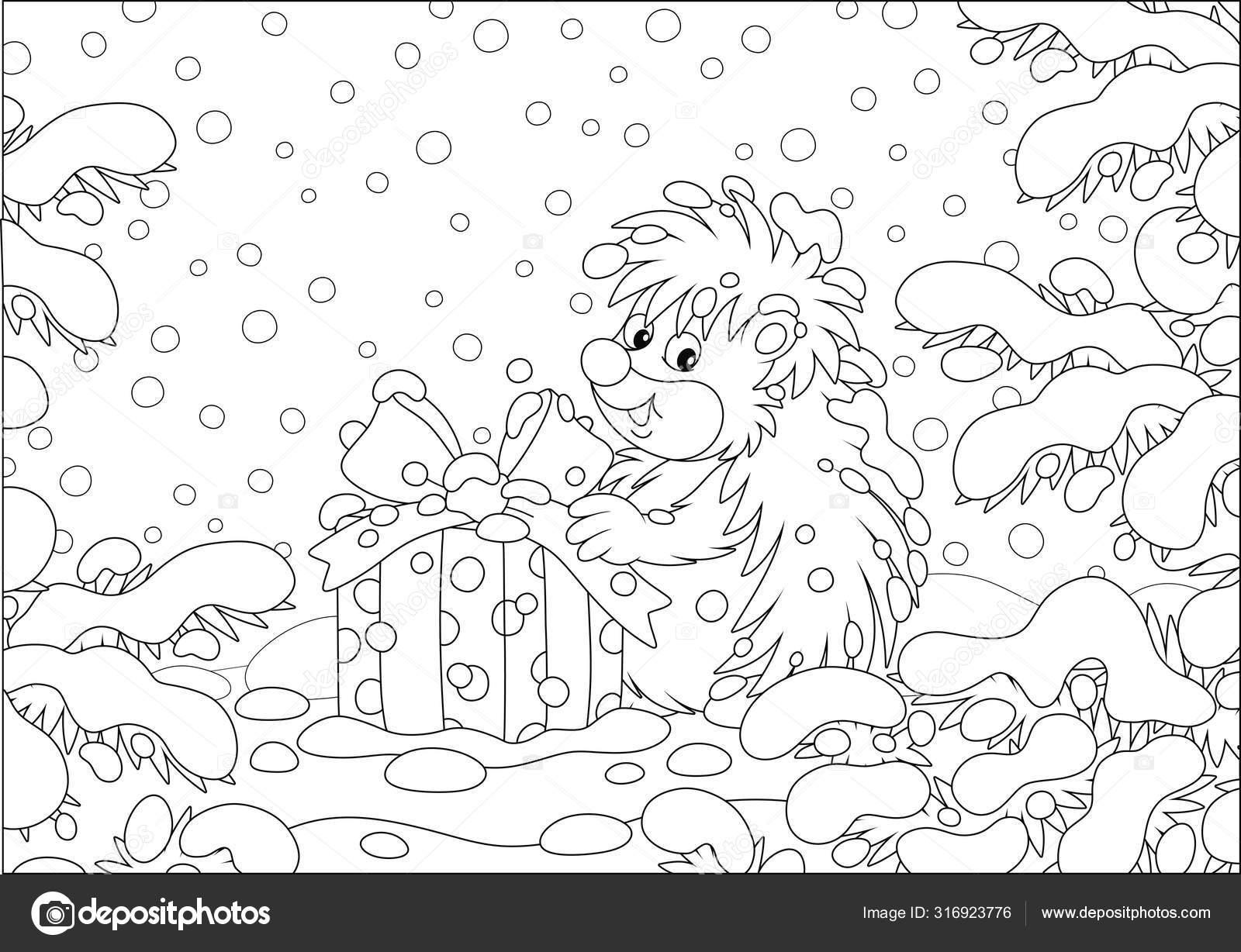 Pouco Espinhosamente Surpreendido Ouriço Com Presente Natal