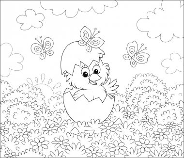 Hatched small chick looking out of a cracked egg on grass with flowers and butterflies flittering around on a sunny spring morning, black and white vector cartoon illustration