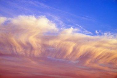 Color sky summer backround