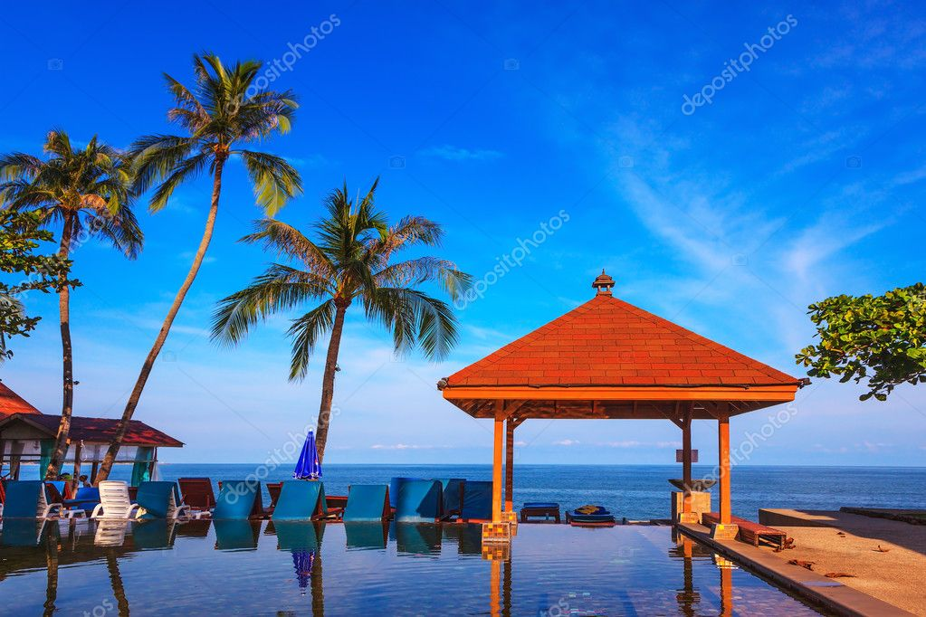 Pool with canopy surrounding by palm trees