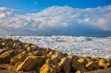 Huge foaming waves on shore