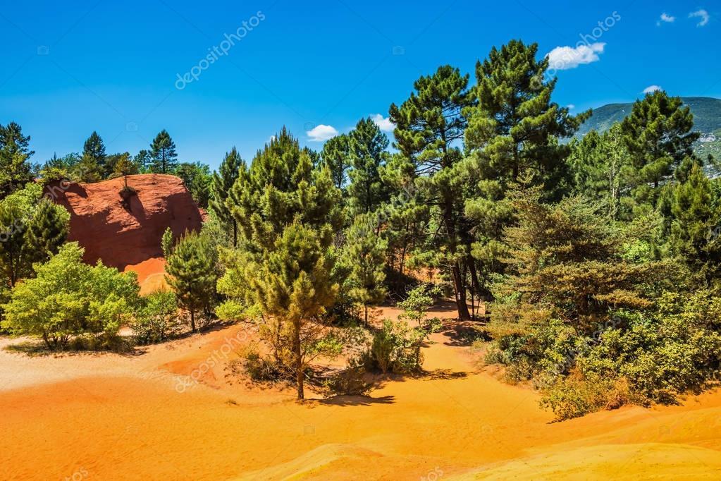 Green trees with unique orange hills