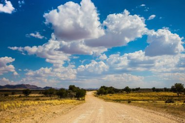 Dirt,road,African,steppe,