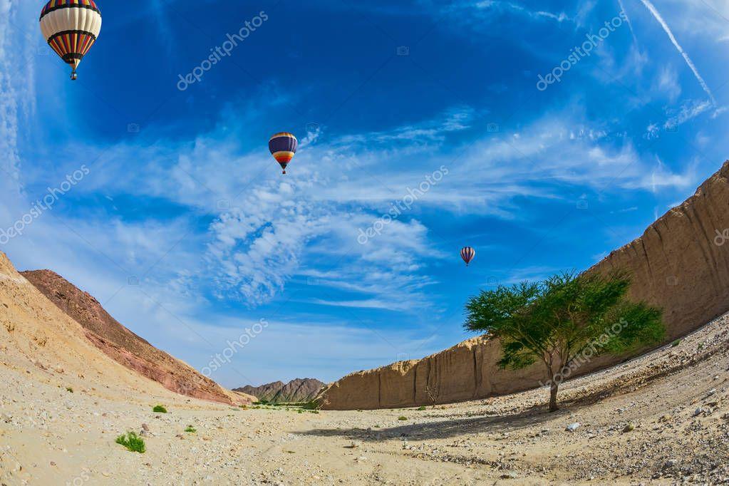 balloons over hot desert