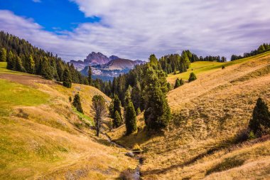The natural landscape of the Alps di Siusi. Fabulous mountain valley. The concept of an active and eco-tourism